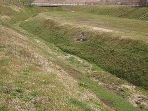 柳之御所の堀