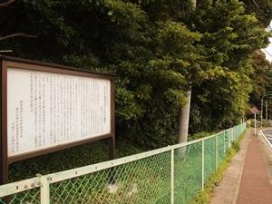 小田原高等学校の樹叢