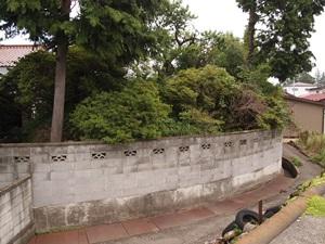 白河城三の丸土塁