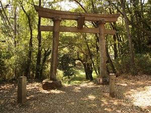 藤武神社一の鳥居