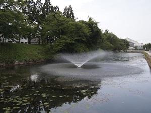 東三の丸の水掘