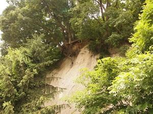 五日市館南部の断崖