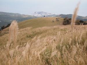 山頂から稲取岬を望む