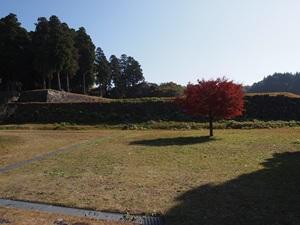 於津賀社跡から見た三の丸と二の丸